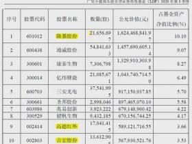 刘格菘最新动向:斥资超百亿重仓这3只新能源标的